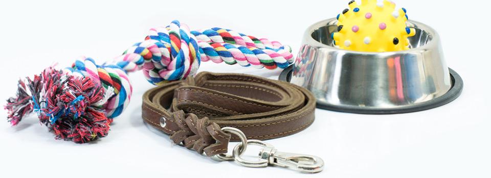 Pet Supplies*/pet-supplies